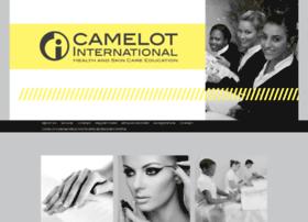 camelotint.co.za