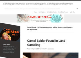 camelspiders.net