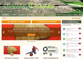 cannabis-culture.ch