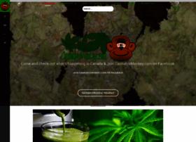 cannabismonkey.com