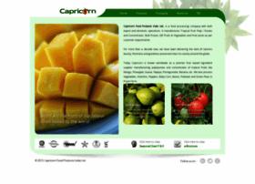 capricorngroup.com