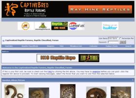 captivebredreptileforums.co.uk