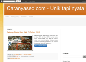 caranyaseo.com