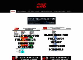 carnevalehockeygroup.com