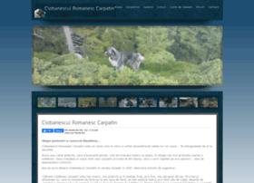 carpatin.info