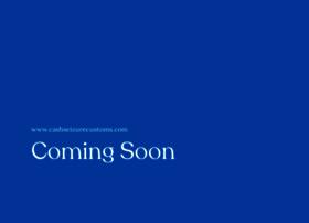 cashseizurecustoms.com