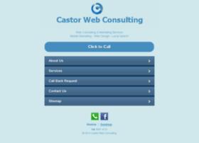 castorwebconsulting.com