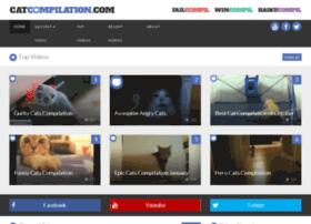 catcompilation.com