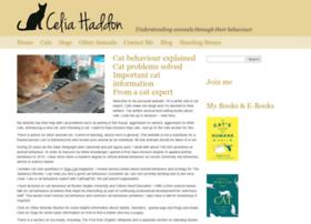 catexpert.co.uk