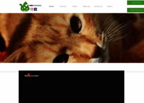 catsconservatory.com.au