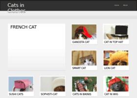 catsinclothes.com