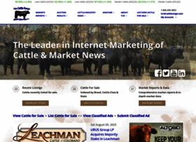 cattlerange.com