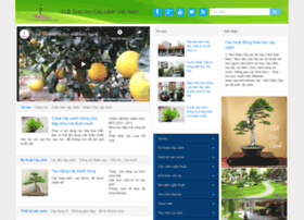 caycanhvietnam.net