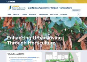 ccuh.ucdavis.edu