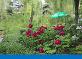 cdrking.gps99.net