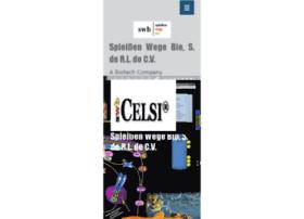 celsi-swb.com