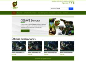 cesaveson.com