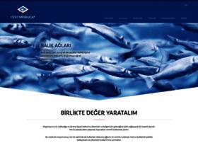 cesit.com