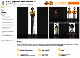 chainpulleyblock.com