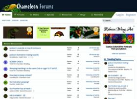 chameleonforums.com