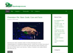 chameleonlovers.com