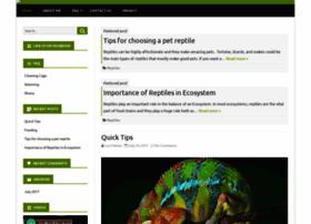 chameleonsonline.com