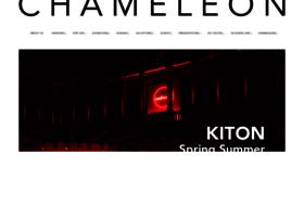 chameleonvisual.co.uk