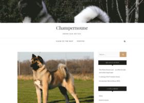 champernouneakitas.com