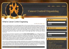 chaoscontrolorganizing.com