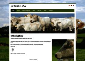 charolaise.suchlica.pl