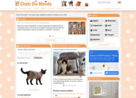 chatsderace.com