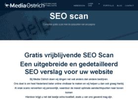 check-seo.nl