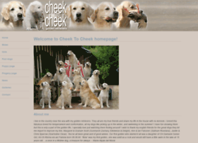 cheektocheek-goldens.com