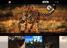 cheetahexperience.com