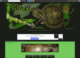 cheloniaforum-tortue.forumactif.com
