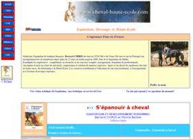 cheval-haute-ecole.com