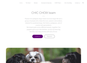 chicchoix.com
