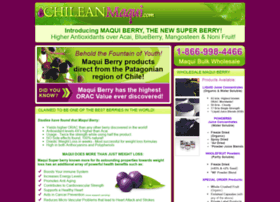 chileanmaqui.com