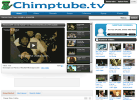 chimptube.tv