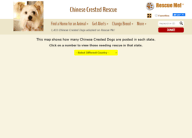 chinesecrested.rescueme.org