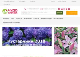 chudo-clumba.ru