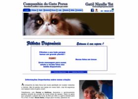 ciadogatopersa.com.br