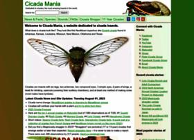 cicadamania.com