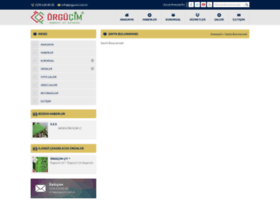 cimlicit.com