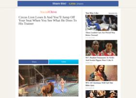 circus-lion.socialchive.com