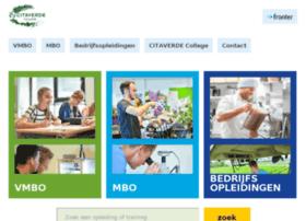 citaverdecollege.nl