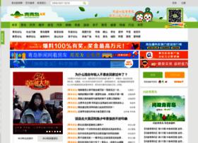 club.qingdaonews.com