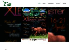cnog.org.mx