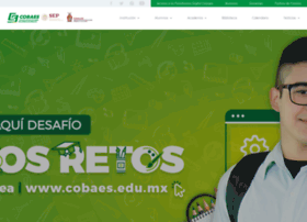 cobaes.edu.mx