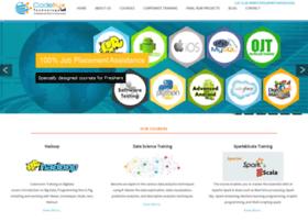 codefruxtechnology.com